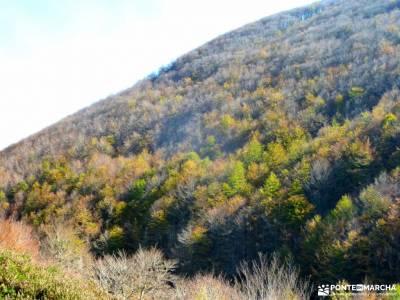 Selva Irati-Pirineo Navarro-Puente del Pilar;las majadas cuenca tiempo en la pedriza como hacer amig
